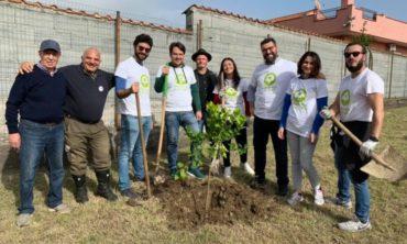 Alberi per il futuro a Giardini Naxos (ME)